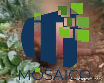 Atrapan a presunto asesino de mujer en Yalí - Mosaico CSI