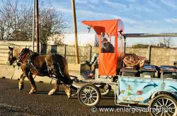 Société A Stains, on est à cheval sur la collecte des déchets alimentaires - enlargeyourparis.fr