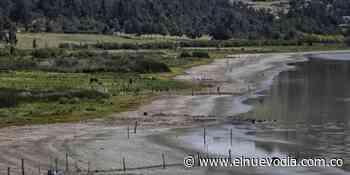Laguna de Suesca, en estado crítico - El Nuevo Dia (Colombia)