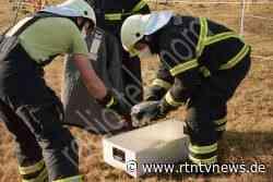 Escheburg: Geschwächter Graureiher gerettet | *rtn - RTN - News und Bilder aus dem Norden