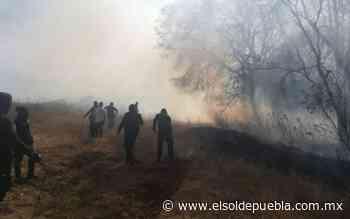 Sofocan incendio cerca de zona arqueológica la Pedrera en Tlalancaleca - El Sol de Puebla