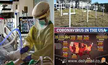 U.S. COVID-19 new daily cases rise slightly to more than 73,000 and deaths increase to 2,447