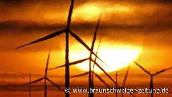 Nachhaltige Geldanlagen: Investieren mit grünem Gewissen