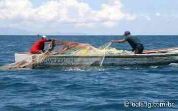 Cerca de 12 toneladas de perumbeba são pescadas em Iguaba Grande - Jornal O Dia