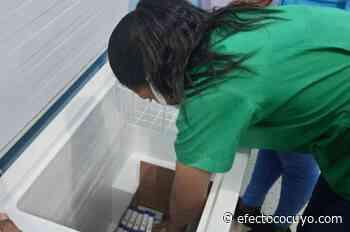 Sputnik V: llegan vacunas a Monagas y Sucre inicia inmunización - Efecto Cocuyo