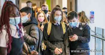 Masks and tests in schools won't be mandatory - but are 'highly recommended'