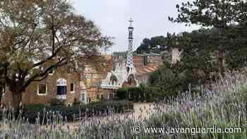 El triunfo de la naturaleza en el Park Güell - La Vanguardia