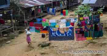 Defensoría denuncia que indígenas del Alto Baudó viven una calamidad pública - El Colombiano