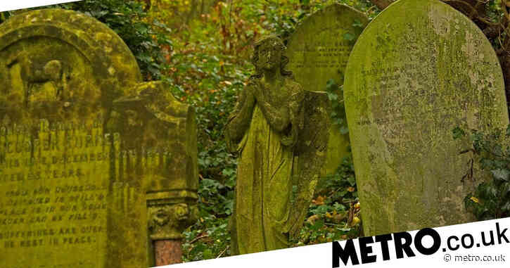 Cemetery overrun with 'IPA drinking yuppies' who are 'having sex near graves'