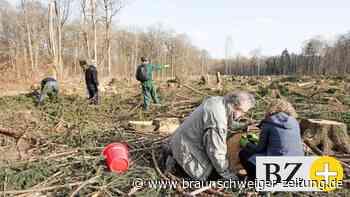 Tierschutz : Waldhof - Naturschützer geben alles für die Lurchis
