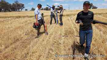 Soilborne solutions to boost grain yields