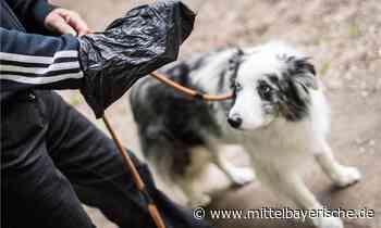 Ärger wegen Hundekot in Zandt - Region Cham - Nachrichten - Mittelbayerische