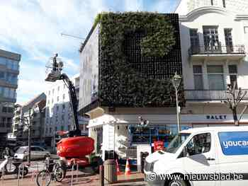 Verticale tuin met gigantisch scherm wordt nieuwe blikvanger in Lippenslaan - Het Nieuwsblad
