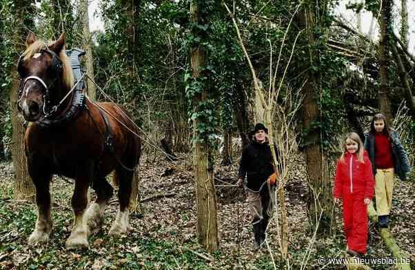 Trekpaard Baron geeft eerste speelbos vorm