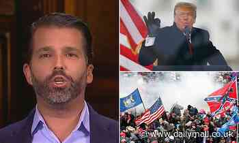 Donald Trump Jr. hammers Republicans who 'lose gracefully' while praising his father