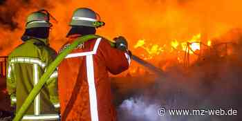 Feuerwehreinsatz bei Coswig: Holzlager abgebrannt, Polizei ermittelt - Mitteldeutsche Zeitung