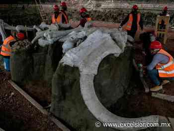 Ya se construye Museo del Mamut en Santa Lucía: López Obrador - Excélsior