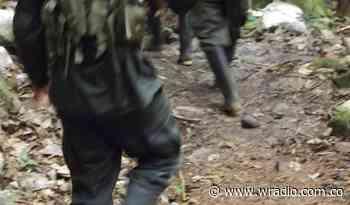Disputas entre grupos armados generan desplazamientos en Guapi, Cauca - W Radio