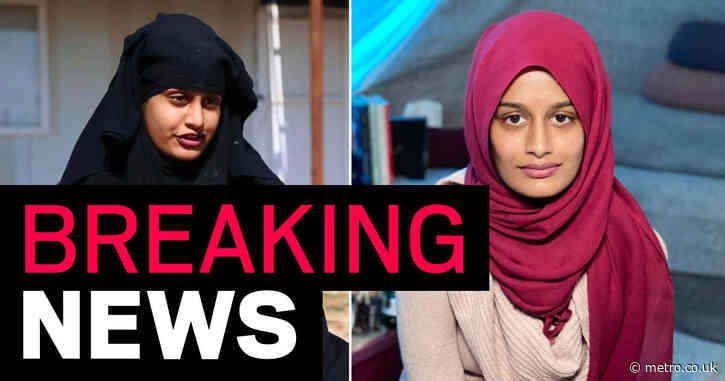 Isis bride Shamima Begum loses court battle to let her back into UK