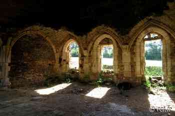 Au bord du Lay, la discrète abbaye de Trizay est fondée au XIIe siècle avant de connaître prospérité et déc... - RCF