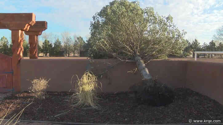New Mexico family repairing damage left behind by back-to-back winter storms
