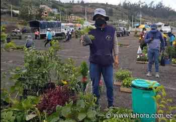 Nuevo sitio de comercialización de plantas en Pelileo - La Hora (Ecuador)