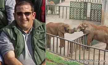 Elephant kills zookeeper by hitting him around the head with its trunk and slamming him into cage