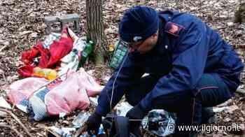Merone, spacciavano nei boschi di Nobile: arrestata banda - IL GIORNO