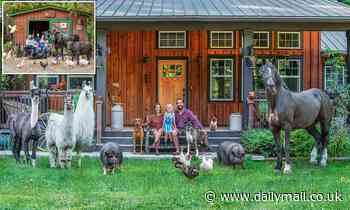 Smile for the 'farmily' portrait! Photographer travels the world capturing families and animals