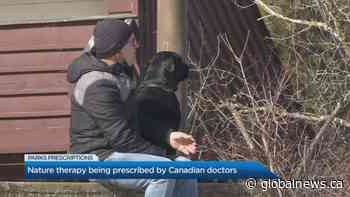 Nature therapy being prescribed by Canadian doctors
