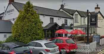 Pub customer knocked unconscious following row over hose pipe