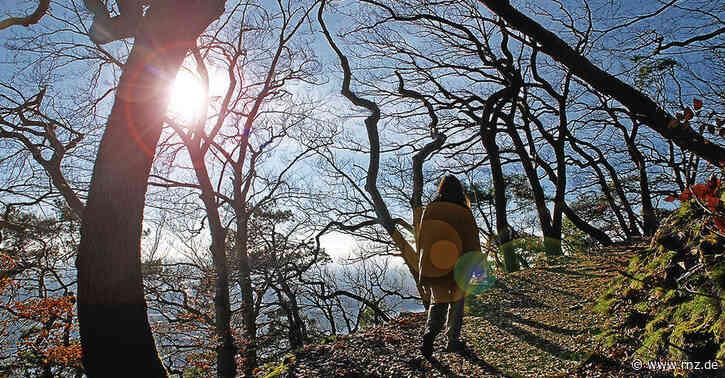 Heidelberg:  Fünf Freizeittipps fürs sonnige Wochenende abseits der überfüllten Neckarwiese