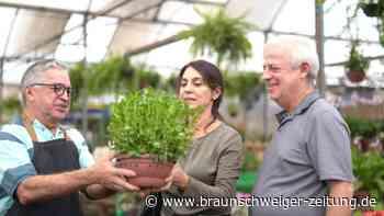 Baumärkte und Gartencenter: Wiedereröffnung