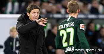 Maximilian Arnold vom VfL Wolfsburg zur EM? Oliver Glasner dafür - SPORT1