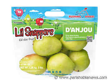 The Proof is in the Numbers: d'Anjou Pears From Stemilt Make for Successful Sales - PerishableNews
