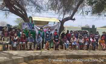 Sullana: criadores de cerdos de Querecotillo serán capacitados en buenas prácticas pecuarias - El Regional