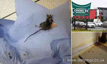 27 mice are found inside Chinese restaurant in as owner is charged with breaching hygiene standards