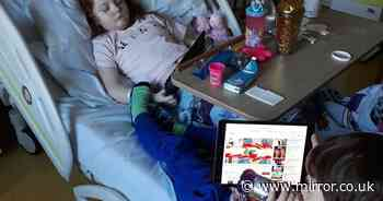 Girl, 7, with incurable brain tumour reunited with twin in heartbreaking photo