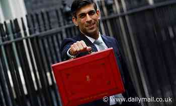 Rishi Sunak will launch £100million taskforce to catch the Covid fraudsters