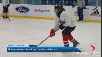 NHL stars help to break barriers on ice for new Canadians