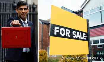 Rishi Sunak to guarantee mortgages with government loans in next week's budget