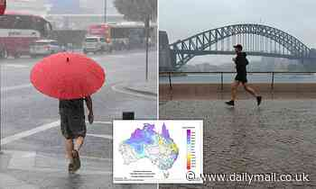 The summer of soaking: Eastern states prepare for a battering of rain over the weekend