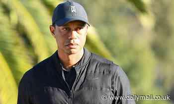 Tiger Woods undergoes MORE procedures on his leg after horror crash