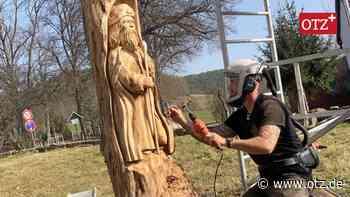 Zweites Leben für Kirchenulme in Rottenbach - Ostthüringer Zeitung