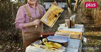 Darmstadt: Auch die Bienen starten in die Saison