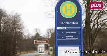 Warum der H-Bus noch nicht am Jagdschloss Kranichstein hält