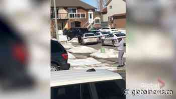 Video captures dramatic arrest of driver who allegedly stole tow truck in Brampton, Ont.