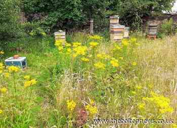 Beekeeper gives warning after hives kicked in Horwich
