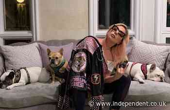 Lady Gaga's bulldogs returned unharmed after kidnapping