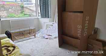 Couple save £2k transform dull living room into stylish pad using Gumtree deals